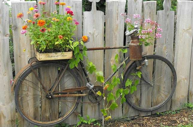 The old bike which you don't ride can be used for garden filling