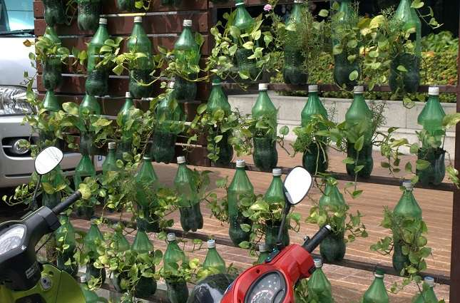 Use of plastic bottles for planting also recycling the plastic along the way