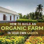 How to build an organic farm