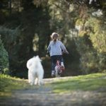When's the Best Time to Start Learning How to Ride a Bike (2)