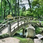 Preparing Your Garden For A Pond (1)